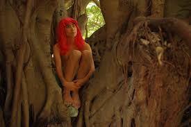 こちらのキジムナーは、樹齢何百年ガジュマルの木に宿ります・・・。