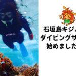 石垣島キジムナーダイビングサークル始めました!!